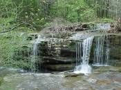 Burden Falls - Shawnee National Forest, Pope County, Illinois