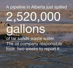 Every tree and plant and animal in the area that was touched by the spill died. Chief of the Dene Tha First Nations.