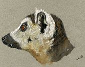 "ORIGINAL-Lemure madagascar head monkey primatestudy wildlife color animal drawing 8x5""  art original Watercolor painting by Juan bosco"