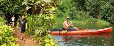 Kayak Adventures - Guided Waterfall Adventure - Hawaii Discount