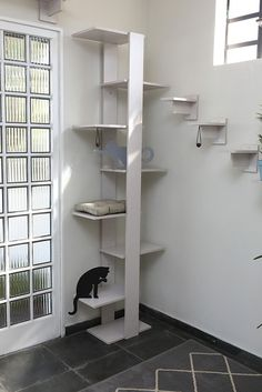 Contemporary Shelving, Pvc Projects, Cat Shelves, Cat Room, Cattery, Space Cat, Pet Shop, Accent Decor, Kids Room