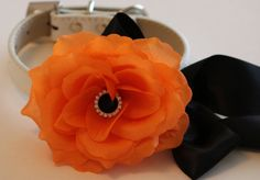 Orange wedding dog collar, Floral dog Collar- Orange flower and Black Rhinestone, Wedding dog accessory