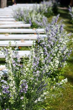 Wildflowers are often inexpensive and equally as beautiful. Line your wedding aisle with these blooms instead of fresh rose petals.