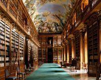 port elizabeth library.