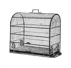 Digital Stamp Design: Free Bird Cage Digital Stamp: 1919 Vintage Graphic...