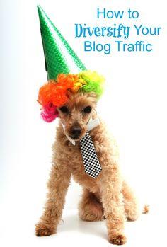 diversify your blog traffic