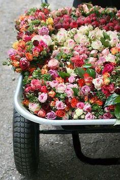 cart full of flowers