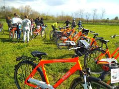 Rome Bike Tour: Appian Way and Aqueducts Park in 6 hours   Toptravel