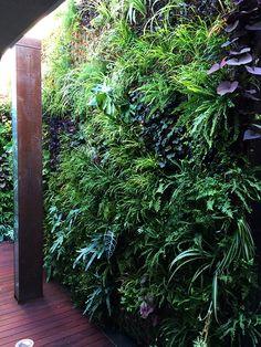 Jardín vertical para restaurante Monvinic