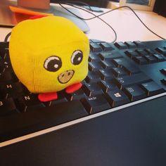 Pulcino intentando aprender mecanografía en la oficina #keyboard #softtoys #teclado #peluches #pelucheando