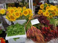 A Massachusetts Farmers' Market is a public market for the primary purpose of connecting, and mutually benefiting, Massachusetts farmers, co...