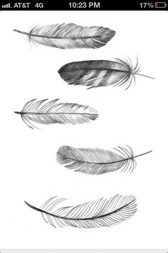"""Feathers..when my friend's brother passed away and I did a """"reading"""" for her. I passed on to her the fact that his sign to her would be feathers...since that time, she and her family have been finding feathers in some most """"unexpected places"""""""