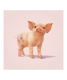 John Butler: Pig by PYRAMID INTERNATIONAL
