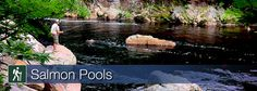 Learn more about the Salmon Pools trail in Cape Breton Highlands National Park Deep Pool, Atlantic Salmon, Parks Canada, Cape Breton, Prince Edward Island, East Coast, Adventure Travel, Golf Courses, Things To Do