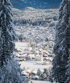 Located in Flims, in the heart of the Swiss Alps, The Hide hotel offers ski-in/ski-out access and is a home base for gastronomic diversity and family experiences. Swiss Alps, How Beautiful, Hotel Offers, Winter Wonderland, Switzerland, Mount Everest, Skiing, Europe, Adventure