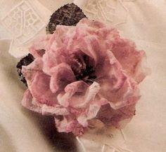 rosa tela 2
