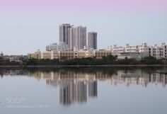 Skyscrapers - Skyscrapers on the banks of the Sholinganallur marshland