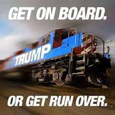 Trump is the ONLY one who can save our country from the current disastrous path we are heading down!