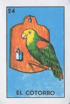 El Cotorro (The Parrot) | Lone Quixote #loteria #MexicanBingo #art #birds