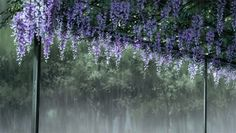 This is a fan page for Clannad as it is a beautiful anime. I also create Gifs and edits, so you can look for that too! Aesthetic Gif, Aesthetic Pictures, Aesthetic Wallpapers, Anime Gifs, Anime Art, Arte 8 Bits, Gif Background, Casa Anime, Garden Of Words
