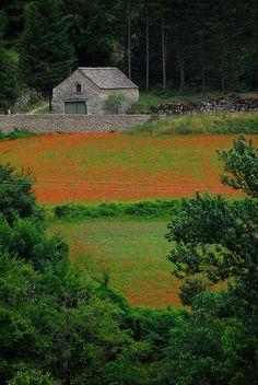 Limousin région, France