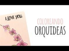 Coloreando orquídeas - TUTORIAL Lápices acuarelables - YouTube