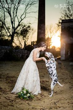 escort merida yucatan sitios web para encontrar pareja gratis