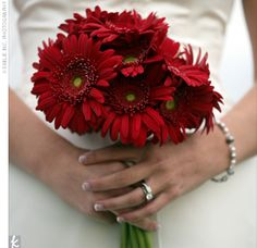 Basically what my bouquet will look like! Except my gerbs won't have the yellow center :)