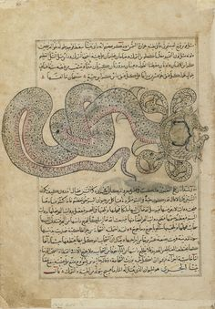 Folio from a Aja'ib al-makhluqat (Wonders of Creation) by al-Qazvini; recto: The Sea-Serpent/Dragon (al-Tannin); verso: Julka (Julka), Dolphin (Dulfin), Dhuiban (Dhu'iban), early 15th century, Iraq or Eastern Turkey