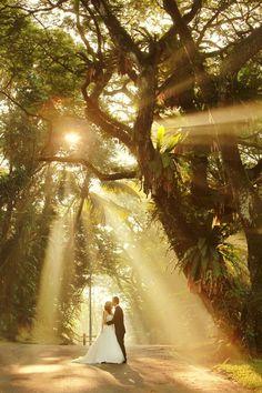 gorgeous woodland bridal photo ideas