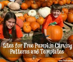 10 Sites for Free Pumpkin Carving Patterns and Templates - Beginning through advanced! Holidays Halloween, Halloween Kids, Halloween Treats, Happy Halloween, Halloween Goodies, Halloween Pumpkins, Pumpkin Template, Pumpkin Carving Templates, Holiday Fun