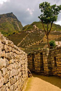 Stone Maze, Machu Picchu, Peru por Chris Taylor