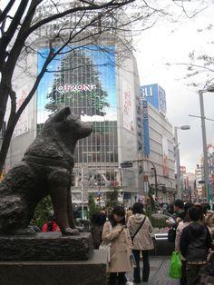 Hachiko statue, Shibuya Station, Tokyo, Japan