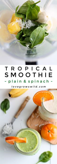 Start your day with a delicious Tropical Smoothie made with orange, banana, pineapple, and coconut! Make it a green smoothie or plain! Smoothie Cleanse, Juice Smoothie, Smoothie Drinks, Healthy Smoothies, Smoothie Recipes, Healthy Snacks, Healthy Eating, Healthy Recipes, Vitamix Recipes
