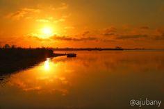 Neix al Sol al Delta de l'Ebre