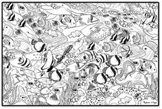 Sea Animal Coloring Pages For Adults Blue Ringed Octopus Coloring Page Dover Publications. Adult Ocean