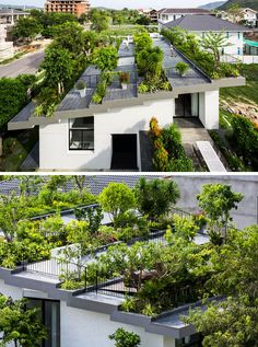The owners of this house wanted a large garden, so they put it on the roof.