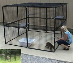 cat cage with mesh tops