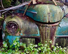 Old Vintage Car Turquoise Covered with Moss Rust