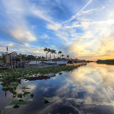 Fort Lauderdale Live : Holiday Park-Everglades