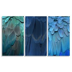 Set of 3 beautiful canvases