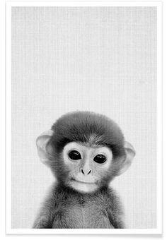 Drawing Portraits - Print 267 en Affiche premium par Lila x Lola Cute Baby Animals, Animals And Pets, Funny Animals, Mundo Animal, My Animal, Beautiful Creatures, Animals Beautiful, Fuchs Illustration, Rare Species