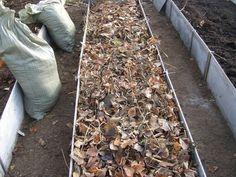Как сделать тёплые грядки своими руками в теплице или на огороде? Давайте сначала определимся со временем их изготовления. Оптимально заняться этим осенью.