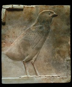 Egyptian, Relief Plaque Showing a Chick, Ptolemaic Period, ca. 305-30 BCE