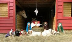 Funny Christmas Animals | Christmas Animal Scene | CuteStuff.co - Cute Animals, Cute Pictures ...