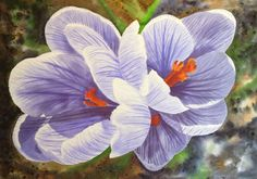 Crocuses. Brusho 38x28 cm. For sale. #Brusho #watercolor