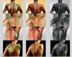 Anatomy 4 Sculptors | 출처: Anatomy 4 Sculptors