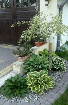 70 Awesome Front Yard Rock Garden Landscaping Ideas – In order to have an excellent … Small Front Yard Landscaping, Front Yard Design, Farmhouse Landscaping, Garden Landscaping, Front Yard Plants, Low Maintenance Landscaping Plants, Small Garden Ideas Low Maintenance, Front Yard Flowers, Small Front Yards