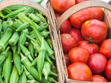 Quiabo Assado com Tomates Receita é super light e saudável 500 gramas de quiabos 5 colheres de sopa de azeite 2 dentes de alho 1 pedaço de gengibre (10 gramas aproximadamente), picadinho ¼ colher de chá pimenta calabresa 3 tomates grandes bem maduros, (ou 300 gramas de tomatinhos cereja) 2 colheres de sopa de açúcar 1 ½ colher de sopa de coentro picado Sal e pimenta