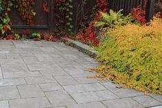 Roomalaiset kivet, profiloitu pinta, harmaa. www.rudus.fi Sidewalk, Walkway, Walkways